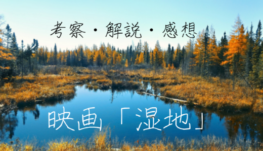 映画「湿地」の感想と考察と解説。